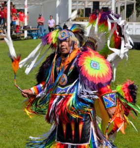 Read more about the article Treaty Days